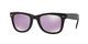 Matte Black / Purple (601s4k)