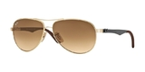 Ray Ban RB8313 Gradient