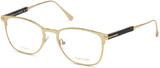 Shiny Rose Gold (028)