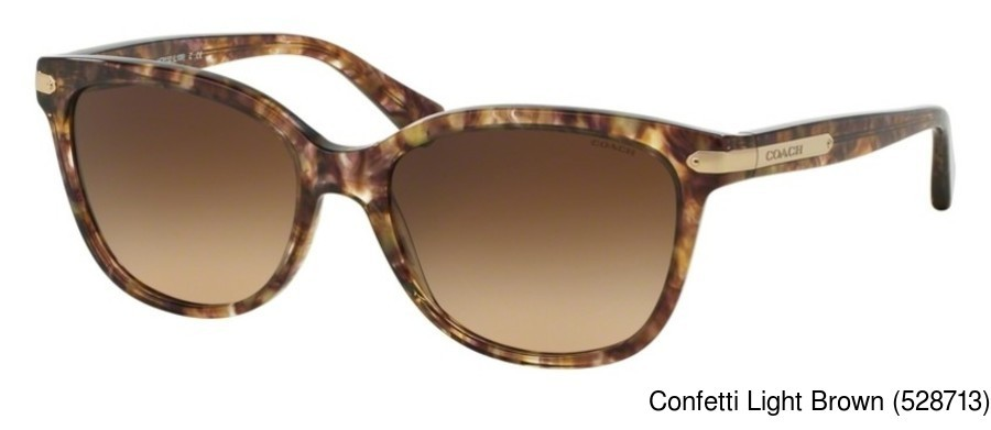 Coach Hc8132 Full Frame Prescription Sunglasses