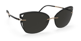 Silhouette Accent Shades 8179 Polarized